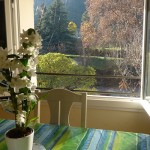 "View from window – cottage ""Gardon"""