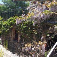Aménagements paysagers au jardin