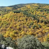 Paysage d'automne en Cévennes